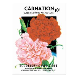 Vintage Seed Packet Label Art, Carnations Flowers Postcard