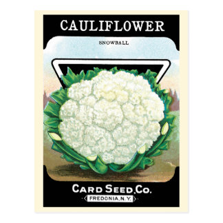 Vintage Seed Packet Label Art, Cauliflower Veggies Postcard