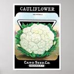 Vintage Seed Packet Label Art, Cauliflower Veggies Poster