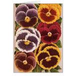 Vintage Seed Packet Label Art, Garden Pansies Card