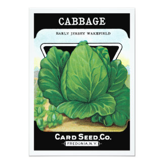 Vintage Seed Packet Label Art, Head of Cabbage Card