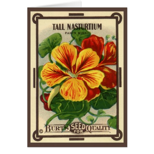 Vintage Seed Packet Label Art, Nasturtium Flowers