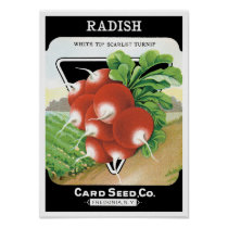 Vintage Seed Packet Label Art, Scarlet Radishes