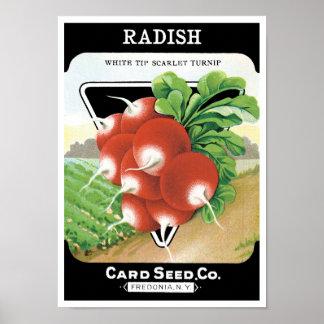 Vintage Seed Packet Label Art, Scarlet Radishes Poster