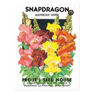 Vintage Seed Packet Label Art, Snapdragon Flowers Postcard