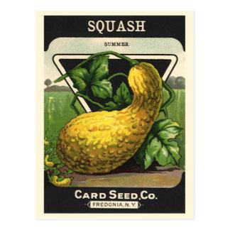 Vintage Seed Packet Label Art, Summer Squash Postcard