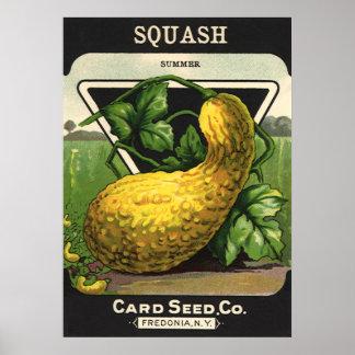 Vintage Seed Packet Label Art, Summer Squash Posters