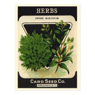 Vintage Seed Packet Label Art Sweet Marjoram Herbs Postcard