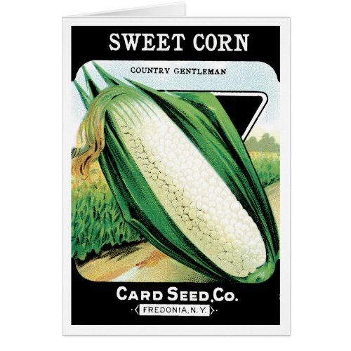 Vintage Seed Packet Label Art, Sweet White Corn