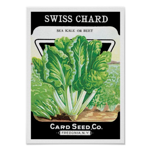 Vintage Seed Packet Label Art, Swiss Chard Veggies