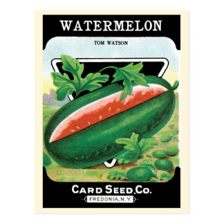 Vintage Seed Packet Label Art, Watermelons Fruit Postcard