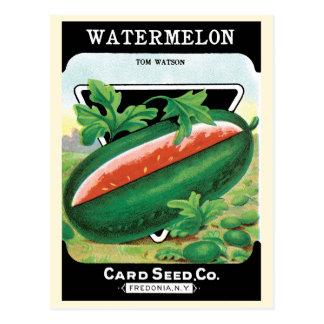 Vintage Seed Packet Label Art, Watermelons Postcard