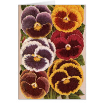 Vintage Seed Packet Labels, Garden Pansy Flowers