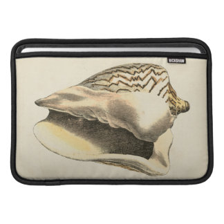Vintage Sepia Conch Shell MacBook Air Sleeve
