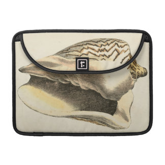 Vintage Sepia Conch Shell MacBook Pro Sleeve