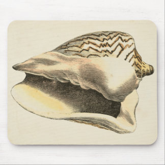 Vintage Sepia Conch Shell Mouse Pad