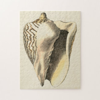 Vintage Sepia Conch Shell Puzzle