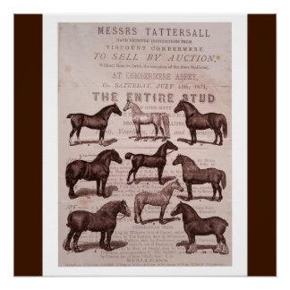 Vintage Sepia Horse & Stallions Auction Poster