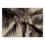 Vintage Sepia Retro Hawaiian Palm Tree Template Card