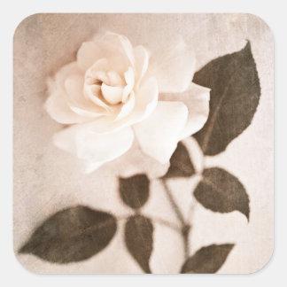 Vintage Sepia Rose Flower Stem Floral Flowers Parc Square Sticker