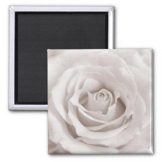 Vintage Sepia White & Cream Rose Background Custom Fridge Magnet