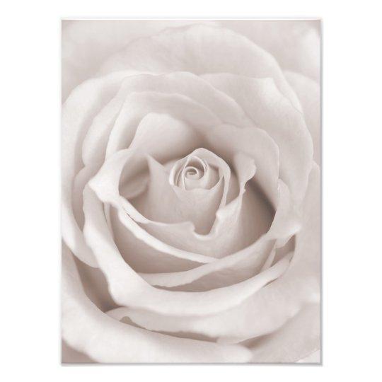 Vintage Sepia White & Cream Rose Background Custom Photo Print