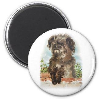 vintage shaggy dog magnet