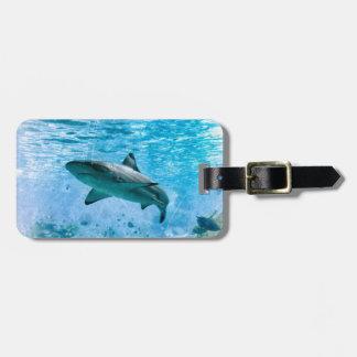 Vintage Shark Luggage Tag