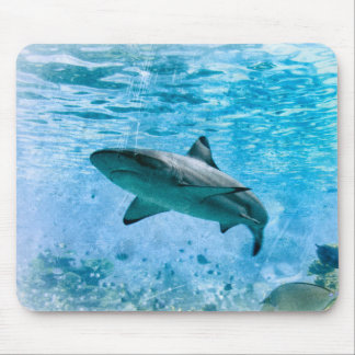 Vintage Shark Mousepad