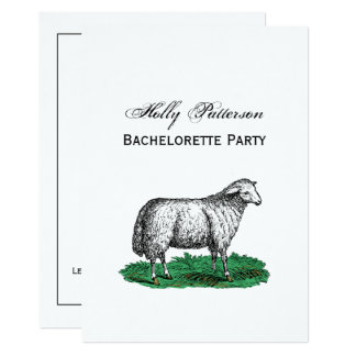 Vintage Sheep Ewe Farm Animals Drawing C Card