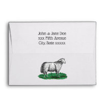 Vintage Sheep Ewe Farm Animals Drawing C Envelope