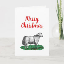 Vintage Sheep Ewe Farm Animals Drawing C Xmas Holiday Card