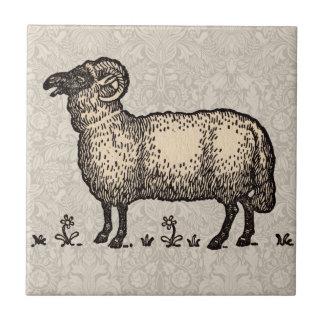 Vintage Sheep Farm Animal Illustration Ceramic Tile