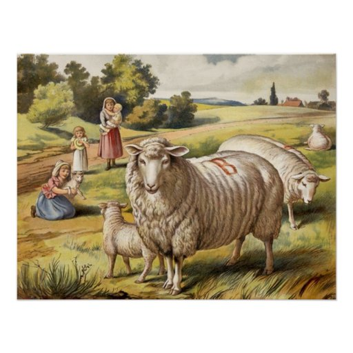 Vintage Sheep in a Field Poster