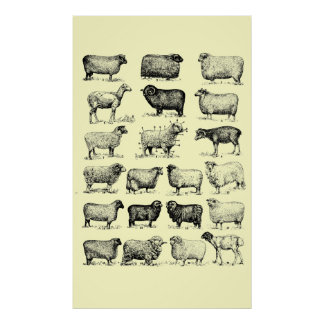 Vintage Sheep Print
