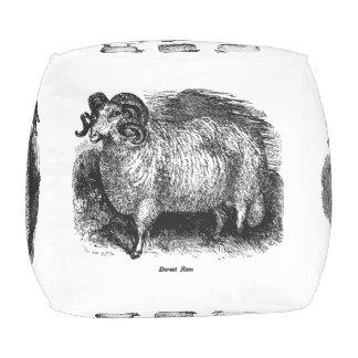 Vintage Sheep Pouf