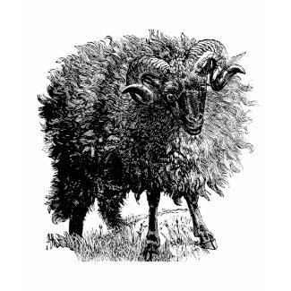 Vintage Sheep shirt