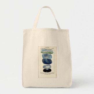 Vintage Shells Canvas Bags