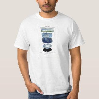 Vintage Shells T-Shirt