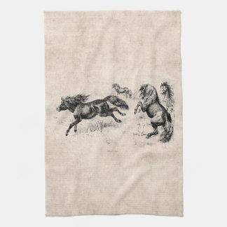 Vintage Shetland Ponies - 1800's Horse and Pony Kitchen Towel