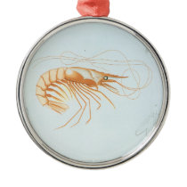 Vintage Shrimp Anatomy, Marine Life Ocean Animals Metal Ornament