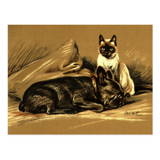Vintage Siamese Cat and French Bulldog Postcard