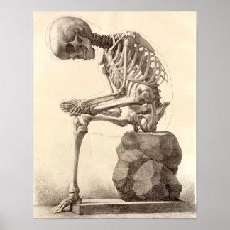 Vintage Sitting Skeleton Poster Print