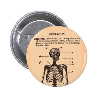 Vintage Skeleton Definition Pinback Buttons
