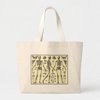 Vintage Skeleton Diagrams Tote Bags