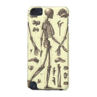 Vintage Skeleton Diagrams iPod Touch (5th Generation) Cases