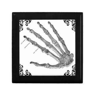 Vintage Skeleton Hand Gothic Jewelry Box