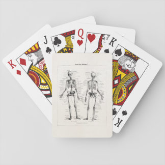 Vintage Skeleton Human Anatomy Bone Bones Skull Card Decks