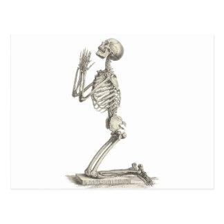 Vintage Skeleton Postcard