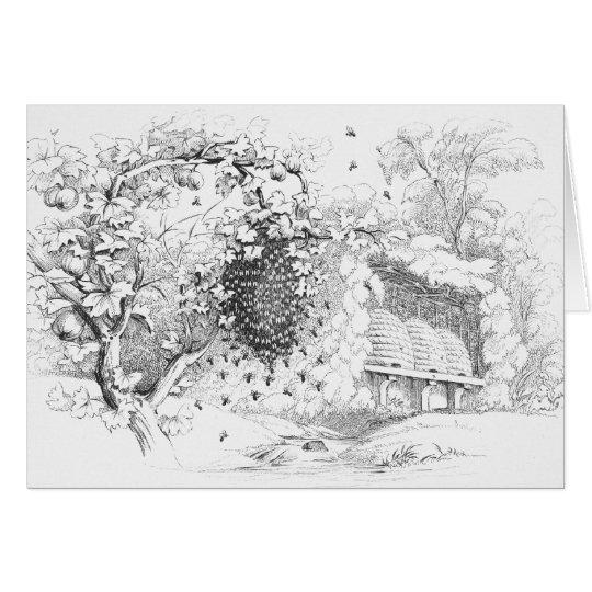 Vintage Skep Bee Hives Drawing Card